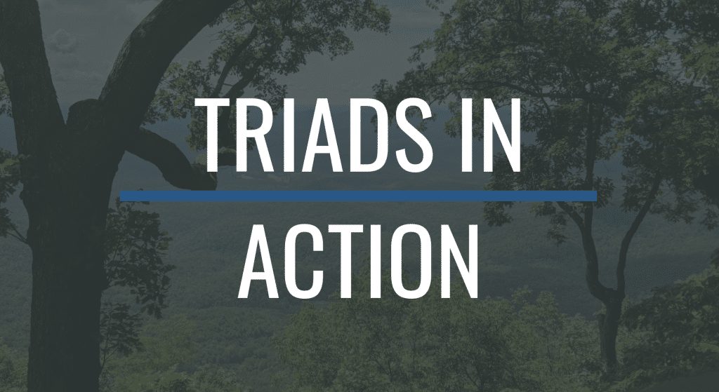 Triads in Action